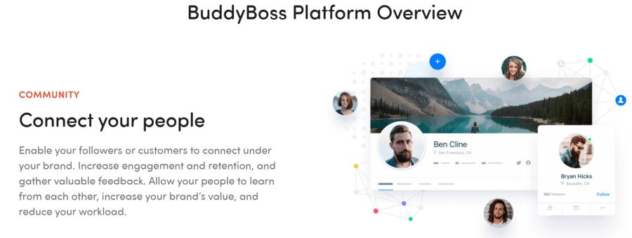 Build a community social network Buddyboss Review